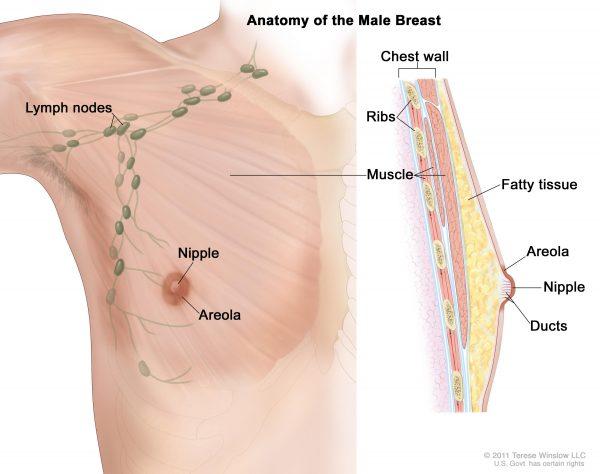 cancer mamar barbati simptome